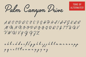Palm Canyon Drive Fonts RetroSupply Co