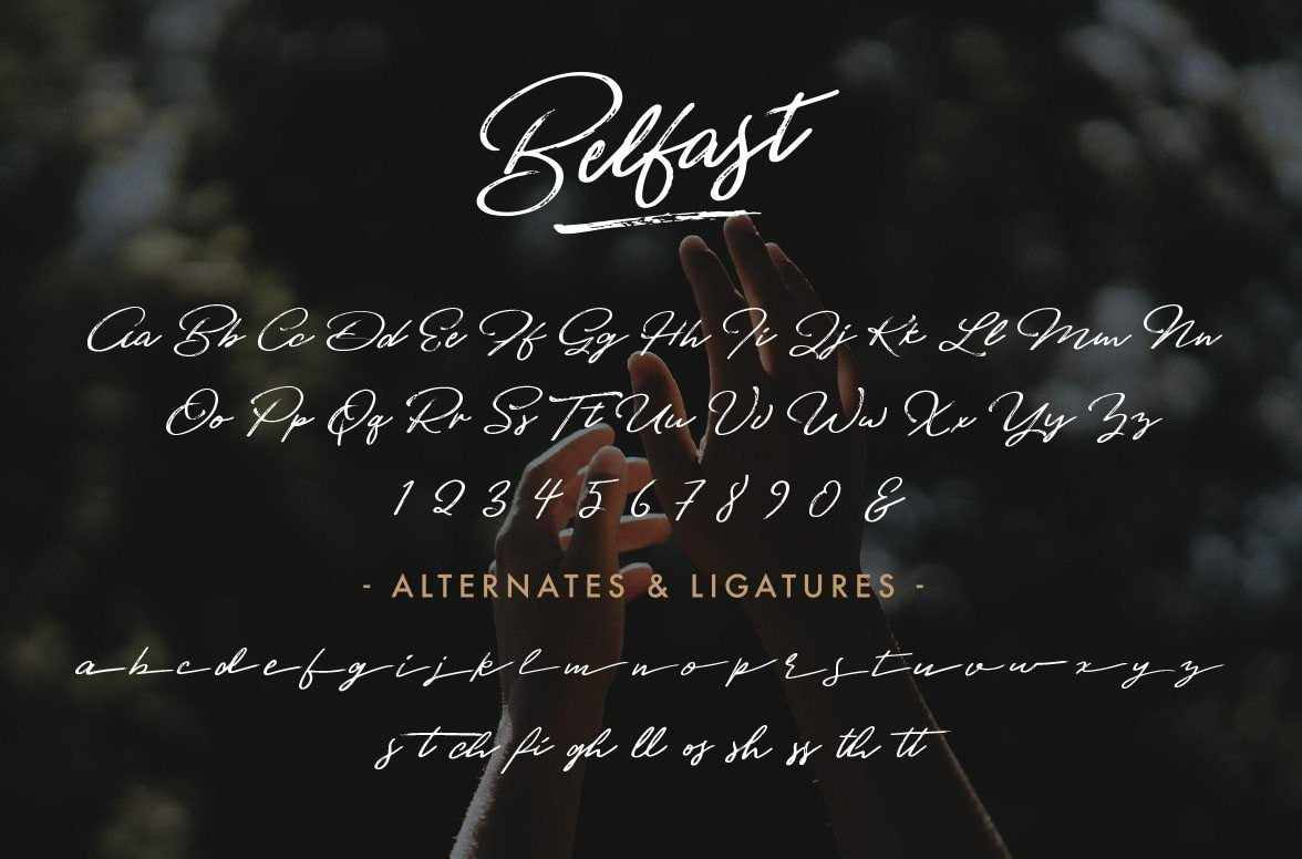 Belfast Dry Brush Script by Hustle Supply Co.