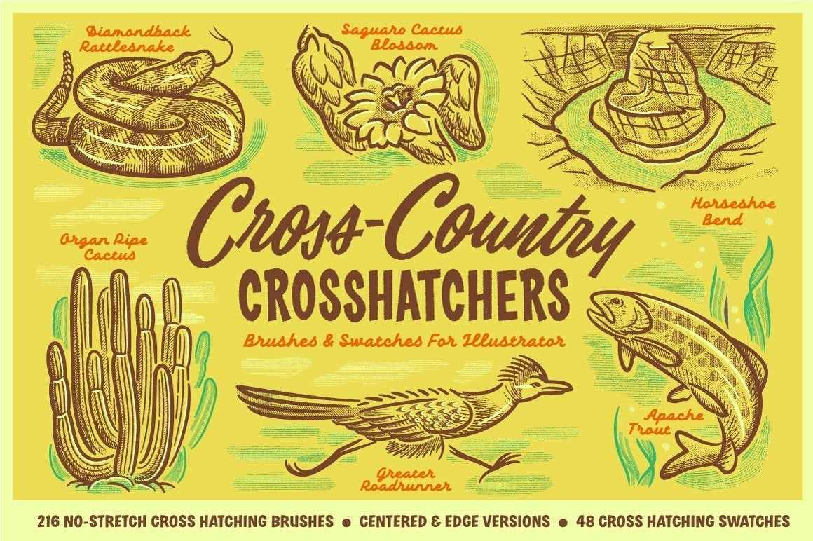Cross-Country Crosshatchers Crosshatching Brushes for Adobe Illustrator by RetroSupply