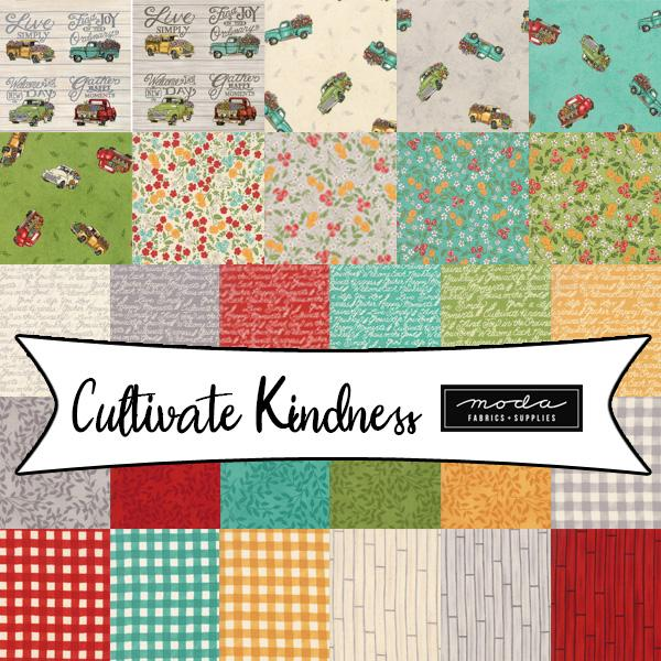 Cultivate Kindness 19930JR