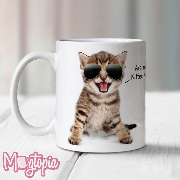 Are You Kitten Me? Mug