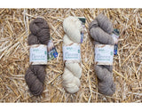 West Yorkshire Spinners - Blue Faced Leicester DK