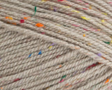 Stylecraft Special Aran with Wool Nepp Colours