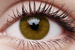 Basic Honey Colour Contact Lenses Pair