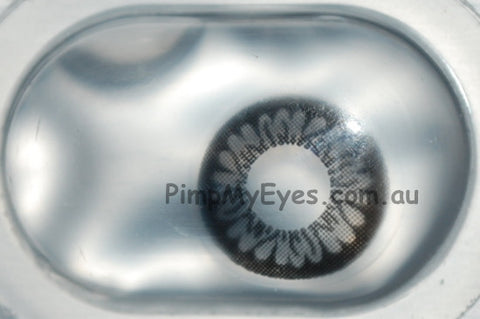 Actual product in Blister - Dolly Black Colour Contact Lenses