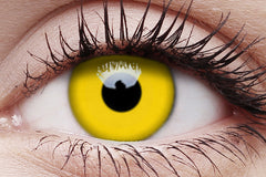 UV Glow Yellow Crazy Contact Lens in Eye