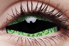 Sclera Reptillia Crazy Contact Lens in Eye