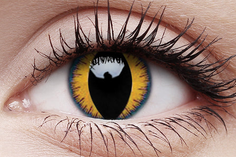 Wolf Moon Crazy Contact Lens in Eye