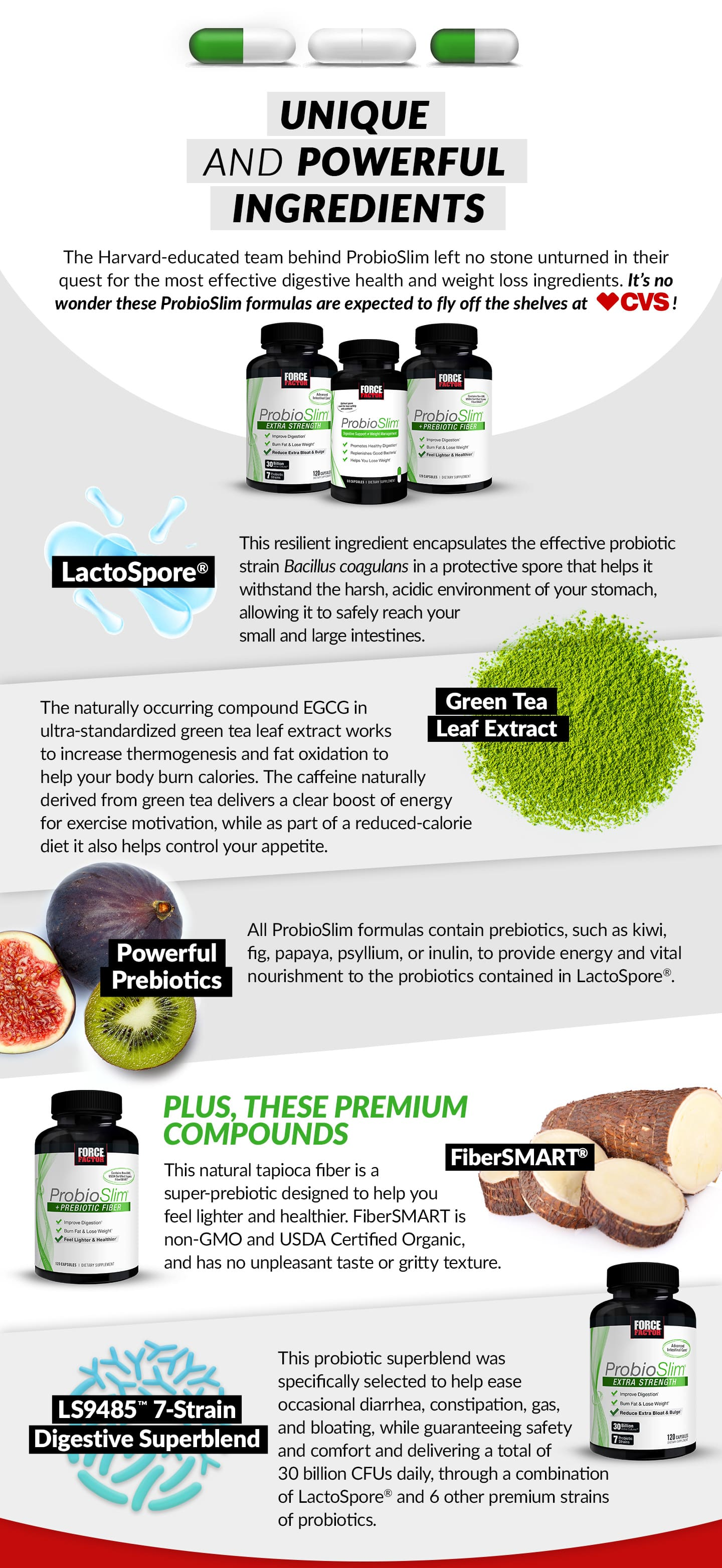 UNIQUE AND POWERFUL INGREDIENTS. The Harvard-educated team behind ProbioSlim left no stone unturned in their quest for the most effective digestive health and weight loss ingredients. It's no wonder these ProbioSlim formulas are expected to fly off the shelves at CVS! Bottles for ProbioSlim, ProbioSlim + Prebiotic Fiber, and ProbioSlim Extra Strength. LactoSpore Ingredient Image. LactoSpore. This resilient ingredient encapsulates the effective probiotic strain Bacillus coagulans in a protective spore that helps it withstand the harsh, acidic environment of your stomach, allowing it to safely reach your small and large intestines. Green Tea Leaf Extract Ingredient Photo. Green Tea Leaf Extract. The naturally occurring compound EGCG in ultra-standardized green tealeaf extract works to increase thermogenesis and fat oxidation to help your body burn calories. The caffeine naturally derived from green tea delivers a clear boost of energy for exercise motivation, while as part of a reduced-calorie diet it also helps control your appetite. Powerful Prebiotics. All ProbioSlim formulas contain prebiotics, such as kiwi, fig, papaya, psyllium, or inulin, to provide energy and vital nourishment to the probiotics contained in LactoSpore®. PLUS, THESE PREMIUM COMPOUNDS. ProbioSlim + Prebiotic Fiber Bottle. FiberSMART Ingredient Image, FiberSMART - This natural tapioca fiber is a super-prebiotic designed to help you feel lighter and healthier. FiberSMART is non-GMO and USDA Certified Organic, and has no unpleasant taste or gritty texture. ProbioSlim Extra Strength Bottle. LS9485 7-Strain Digestive Superblend Ingredient Image. LS9485™ 7-Strain Digestive Superblend. This probiotic superblend was specifically selected to help ease occasional diarrhea, constipation, gas, and bloating, while guaranteeing safety and comfort and delivering a total of 30 billion CFUs daily, through a combination of LactoSpore® and 6 other premium strains of probiotics.