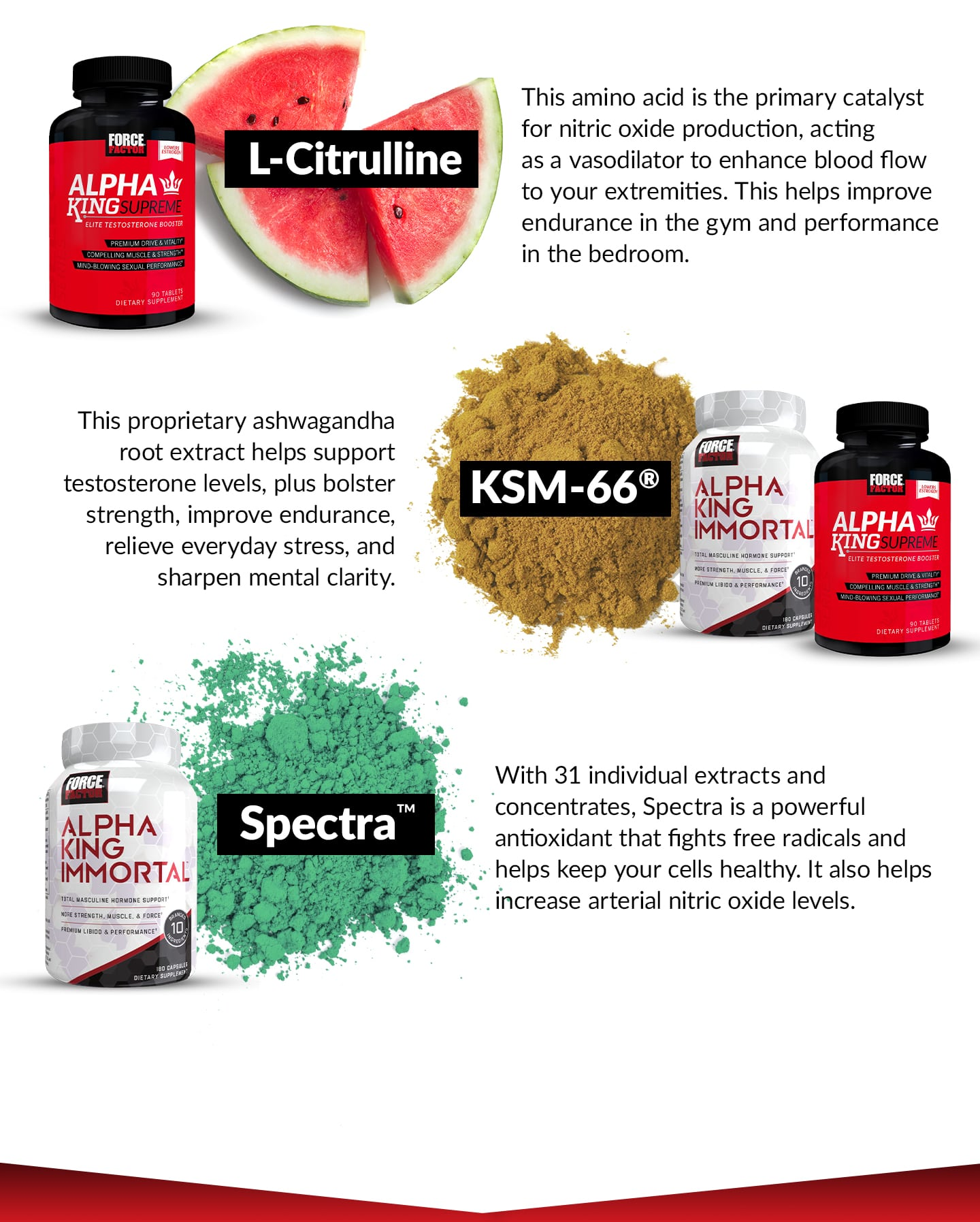 L-Citrulline - This amino acid is the primary catalyst for nitric oxide production, acting as a vasodilator to enhance blood flow to your extremities. This helps improve endurance in the gym and performance in the bedroom. KSM-66® - This proprietary ashwagandha root extract helps support testosterone levels, plus bolster strength, improve endurance, relieve everyday stress, and sharpen mental clarity. Spectra™ - With 31 individual extracts and concentrates, Spectra is a powerful antioxidant that fights free radicals and helps keep your cells healthy. It also helps increase arterial nitric oxide levels.