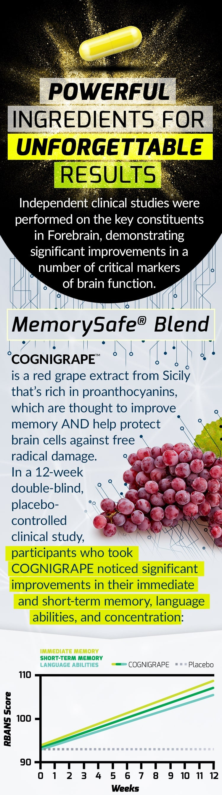 POWERFUL INGREDIENTS FOR UNFORGETTABLE RESULTS. Independent clinical studies were performed on the key constituents in Forebrain, demonstrating significant improvements in a number of critical markers of brain function. MemorySafe® Blend- COGNIGRAPE™ is a red grape extract from Sicily that's rich in proanthocyanins, which are thought to improve memory AND help protect brain cells against free radical damage. In a 12-week double-blind, placebo-controlled clinical study, participants who took COGNIGRAPE noticed significant improvements in their immediate and short-term memory, language abilities, and concentration: