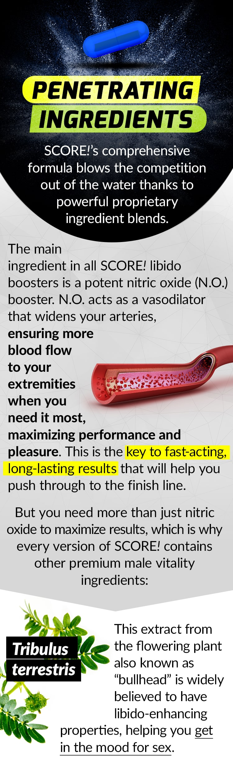 "PENETRATING INGREDIENTS. SCORE!'s comprehensive formulas blow the competition out of the water thanks to powerful proprietary ingredient blends. The main ingredient in all SCORE! libido boosters is a potent nitric oxide (N.O.) booster. N.O. acts as a vasodilator that widens your arteries, ensuring more blood flow to your extremities when you need it most, maximizing performance and pleasure. This is the key to fast-acting, long-lasting results that will help you push through to the finish line. But you need more than just nitric oxide to maximize results, which is why every version of SCORE! contains other premium male vitality ingredients.: Tribulus terrestris - This extract from the flowering plant also known as ""bullhead"" is widely believed to have libido-enhancing properties, helping you get in the mood for sex."