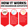 How Zinc Magnesium Aspartate Works: Take 2 tablets daily before bed. Zinc magnesium aspartate helps support testosterone levels, and this formula delivers an optimal 30mg of zinc, 450mg of magnesium, and 10.5mg of vitamin B6, ensuring you get a substantiated dose. BioPerine® is clinically shown to enhance the bioavailability of selenium, helping the formula get to work quickly to deliver incredible results.