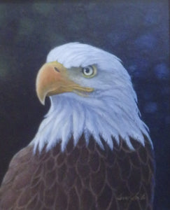 Bald Eagle Portrait by Terry Smith