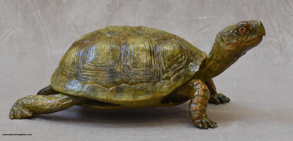 Large Box Turtle Bronze by Jim Eppler
