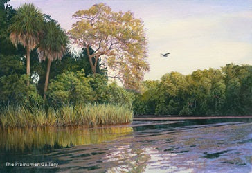 Chassohowitzka River by Charles Rowe
