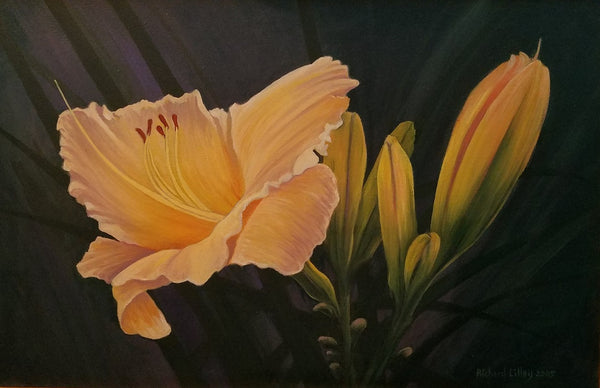 "Richard Lilley Giclee ""Gold Daylilly"""