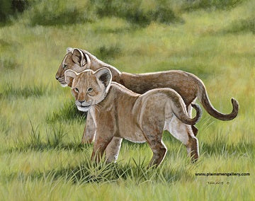 "Ed Takacs Painting ""Lion Cubs"""