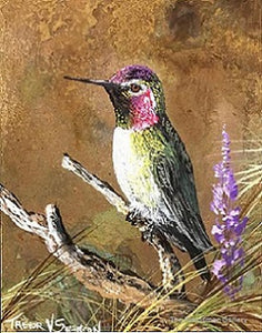 "Trevor Swanson Painting ""Ruby Throated Hummer"""