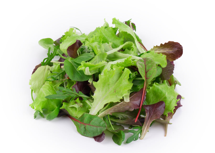 Mesclun Mix Leaves-Italy-EDENSHK