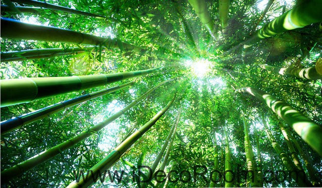 Huge bamboo forest sun beam 00079 ceiling wall mural wall paper decal idecoroom - Image zen nature ...
