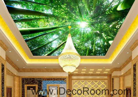 Image of Huge Bamboo Forest Sun Beam 00079 Ceiling Wall Mural Wall paper Decal Wall Art Print Decor Kids wallpaper
