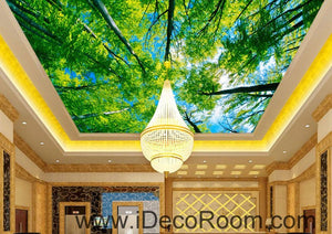 Tree Sky Sun Beam Forest 00087 Ceiling Wall Mural Wall paper Decal Wall Art Print Decor Kids wallpaper