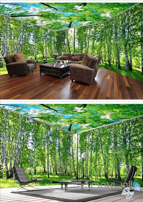 White birch forest theme space entire room wallpaper wall mural decal IDCQW-000019