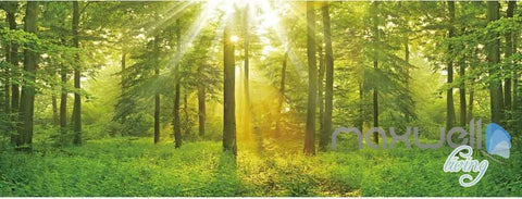 3D Forest Tree Sun Beam Entire Room Wallpaper Wall Murals Art Prints IDCQW-000089