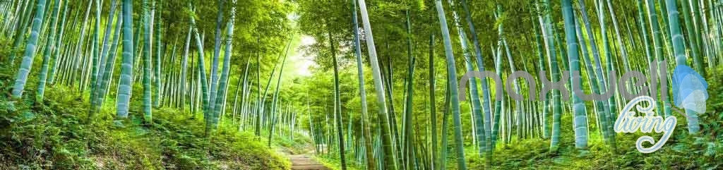 3D Bamboo Forest Entire Room Wallpaper Wall Mural Art Prints eBay