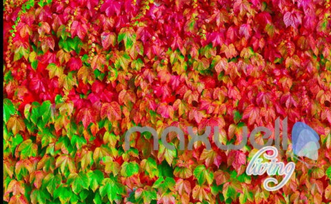 Image of 3D Boston Ivy Door Window Entire Living Room Wallpaper Wall Mural Art Decor Prints IDCQW-000189