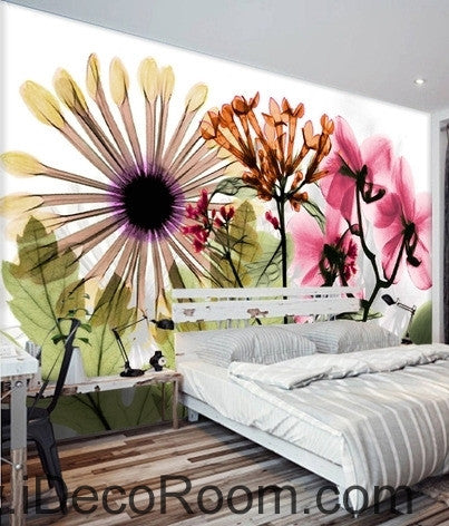 Image of Beautiful dream fresh colorful flowers daisy transparent flowers wall art wall decor mural wallpaper wall  IDCWP-000202