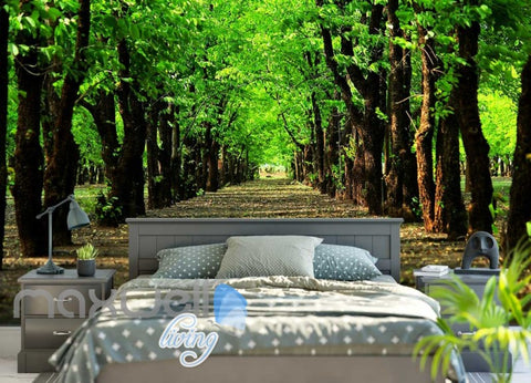 Image of Green Tree Tunnel Path Park Art Wall Murals Wallpaper Decals Prints Decor IDCWP-JB-000124