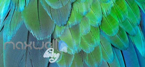 Image of Graphic Design Of Multicolour Feathers Art Wall Murals Wallpaper Decals Prints Decor IDCWP-JB-000667