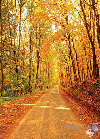 Image of 3D Autumn Forest Lane Corridor Entrance Wall Mural Decals Art Prints Wallpaper 032