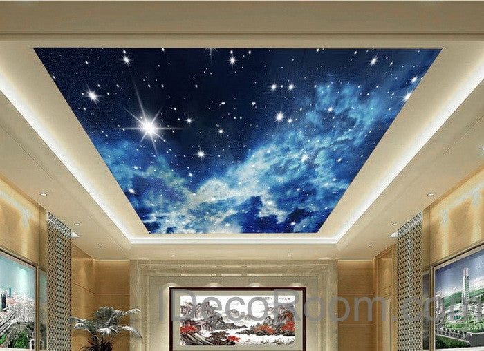 3d starry night galexy ceiling wall mural wall paper decal for Ceiling mural decal