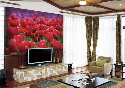 Image of Red Tulip Wall Paper Wall Print Decal Wall Deco Indoor wall