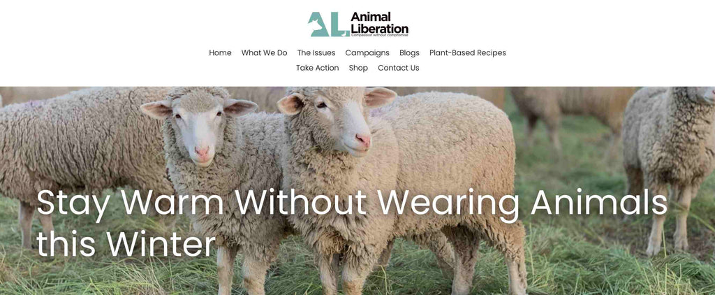 stay warm this winter without animals