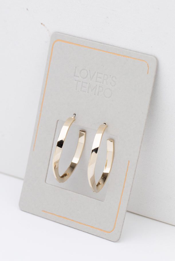 May B. Chic Taylor Twist Hoop Earrings