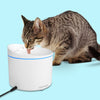 Smart Fountain (For Cat)
