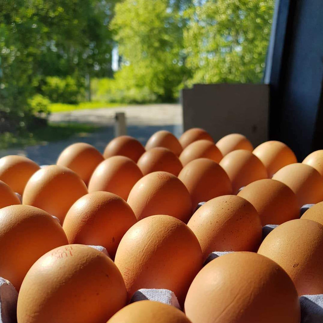 A Tray of Free Range Eggs (30)