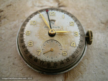 Load image into Gallery viewer, Benrus Original Patina Pie Shaped Dial with Day and Date Functions, Manual, 30mm