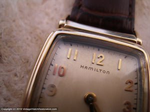 Hamilton 'cld' Brandon with Rare OEM Glass Crystal with Gasket , Manual, 25x43mm