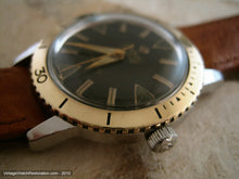 Load image into Gallery viewer, Black Dial Zodiac Sea Wolf with Gold Bezel, Automatic, Very Large 35.5mm