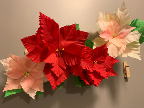 Wall Poinsettia