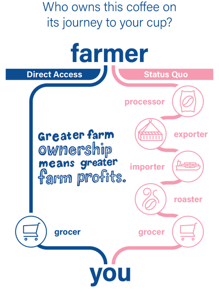 Direct Access Supply Chain Model