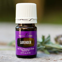 Load image into Gallery viewer, Lavender 15ml ~ Stress, Sleep & Skin