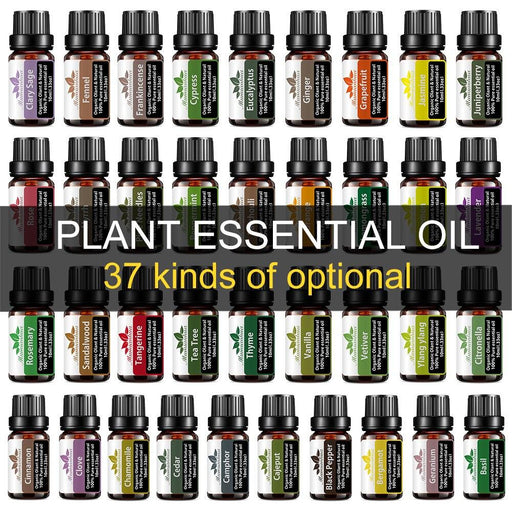 Essential Fragrance Oils For Aromatherapy and Massage - Yoga Outlet Shop™