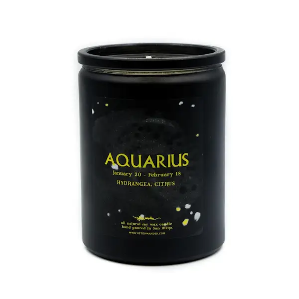 Aquarius: Hydrangea & Citrus -  12 Oz Soy Candle