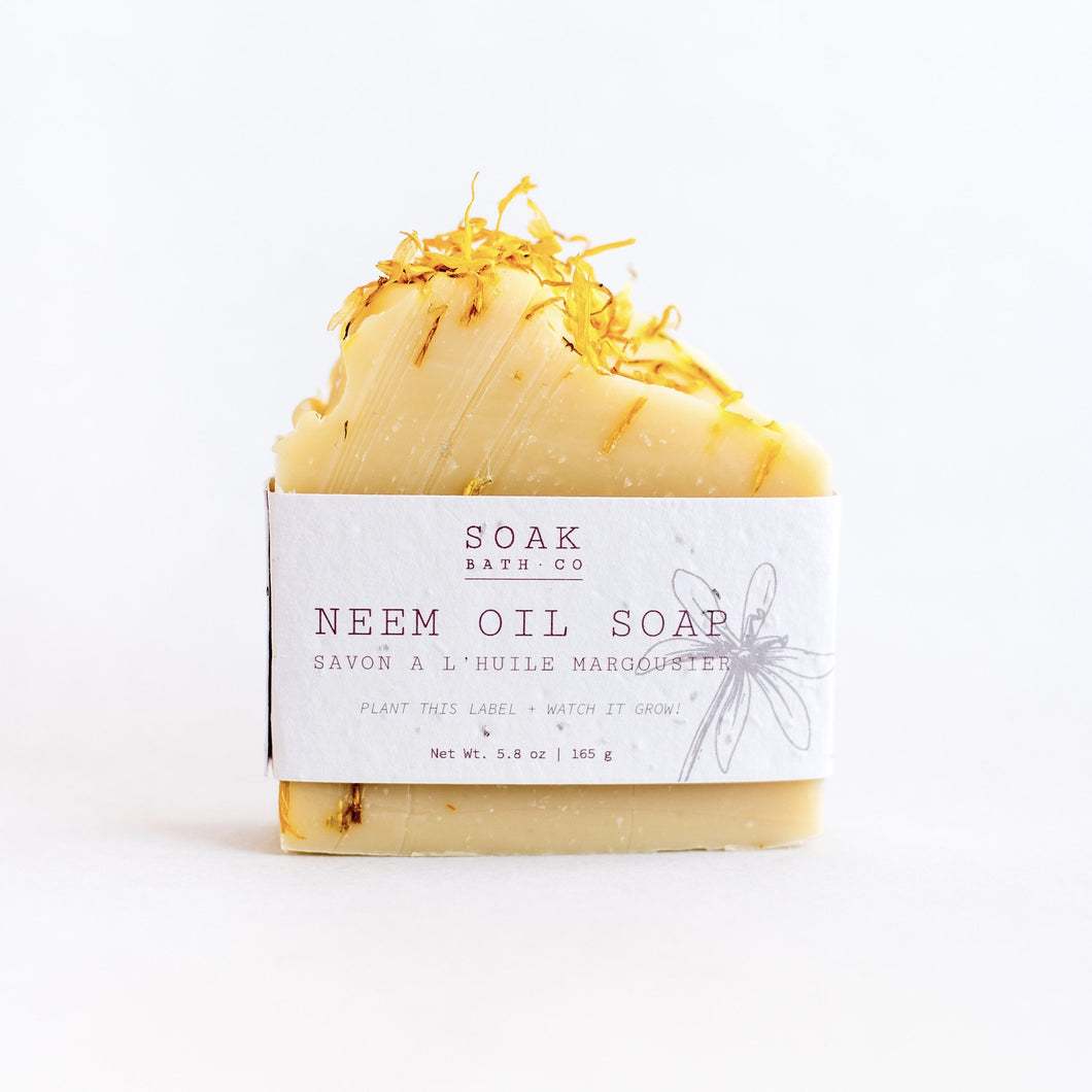 SOAK Bath Co. | Bar Soap - Neem